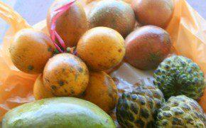 Leckere Früchte zum Mittagessen auf der Terasse
