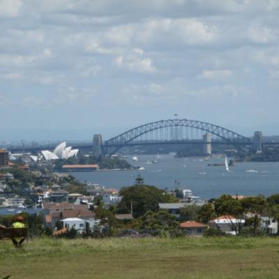Parkblick auf das Opera House in Sydney