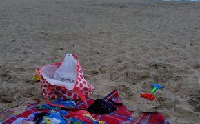 Die Mini geschützt vor Sandflies