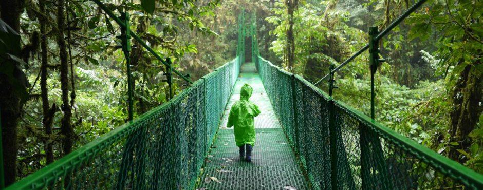 Hängebrücke in Selvatura