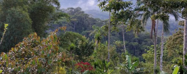 Tolle Berglandschaft in der Region Cartago