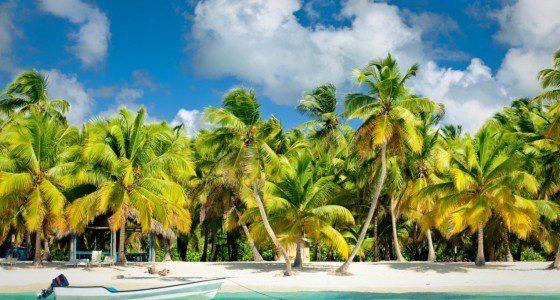 Der Name ist Programm! Ein wirklich exotisches Ticket mit Stopps wie Kuba, Sansibar, den Bahamas, Costa Rica, Brasilien und Island. Ach ja, New York und Südafrika sind auch noch im Paket!
