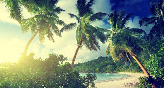 Alle sechs Kontinente: Inselleben auf Tahiti, Galapagos und der Osterinsel, Megacities wie Hong Kong, Singapur und New York, Backpacken durch Australien, Neuseeland und Südamerika… Mehr geht nicht!